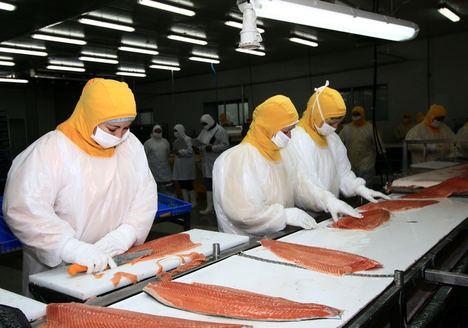 Chile aúna esfuerzos para mantener el nivel de sus exportaciones de alimentos hacia el mundo