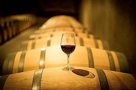 Vilafranca del Penedès, capital del vino. Un destino que sorprenderá al viajero