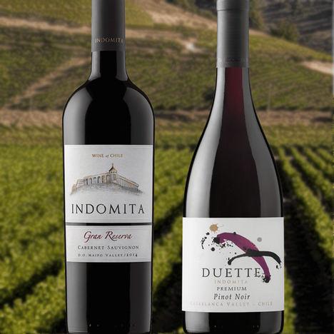 Grupo Marqués del Atrio introduce en España referencias de vinos internacionales de exclusivas zonas del mundo