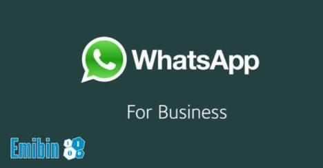 Whatsapp, la revolución que culminará en las webs corporativas en 2018