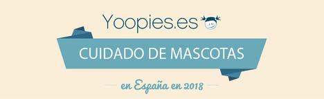 El cuidado de mascotas en España: un trato personalizado y precios asequibles
