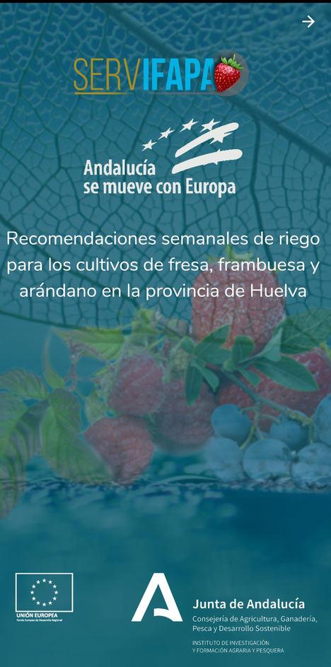 Ifapa crea 'Riego Berry', una app de recomendaciones de riego para los cultivos de fresa, frambuesa y arándanos