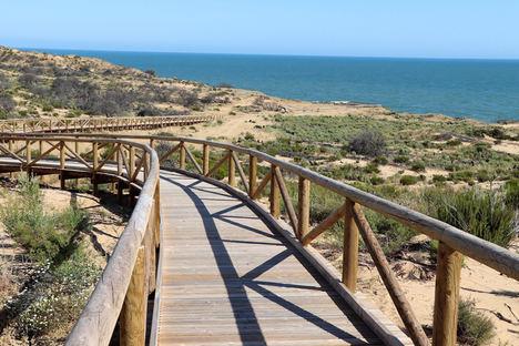 La senda de los gigantes fósiles de Doñana