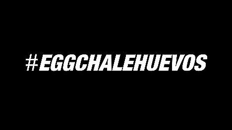 #Eggchalehuevos, el seminario viral de la Universidad de Málaga donde el ponente puede sufrir 40 huevazos