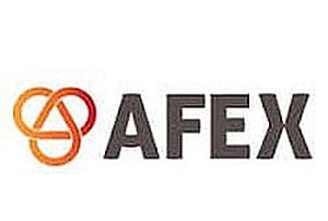 Directivos de las principales compañías del país analizan los nuevos escenarios de cobertura del riesgo de divisas en una jornada organizada por AFEX