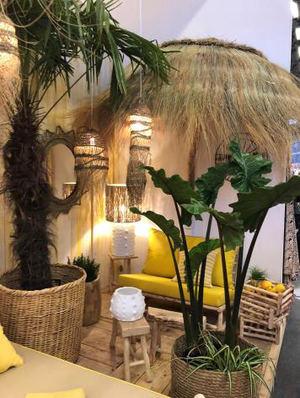 Abre tu puerta al ambiente tropical y déjate seducir por los diseños más exóticos