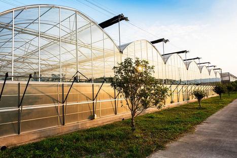 Agricultura continúa agilizando expedientes pese al confinamiento y autoriza el pago de 5 millones a la modernización de explotaciones