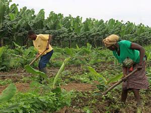 Naciones Unidas premia los esfuerzos de Angola