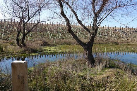 GBCe, Ecoacsa y la UPM unen esfuerzos para incorporar la mejora de la biodiversidad en el diseño de proyectos de edificación sostenible