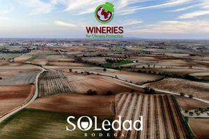 Bodega Soledad, ejemplo de sostenibilidad y compromiso medioambiental
