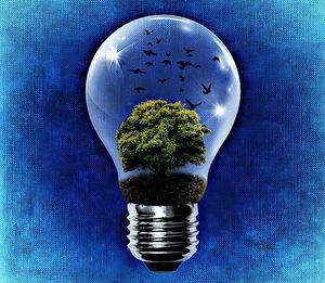 El consumo de energía eléctrica durante la pandemia