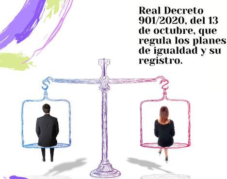 Las Cámaras de Comercio impulsan los Planes de Igualdad en las 706 empresas de Castilla y León de entre 50 y 250 trabajadores