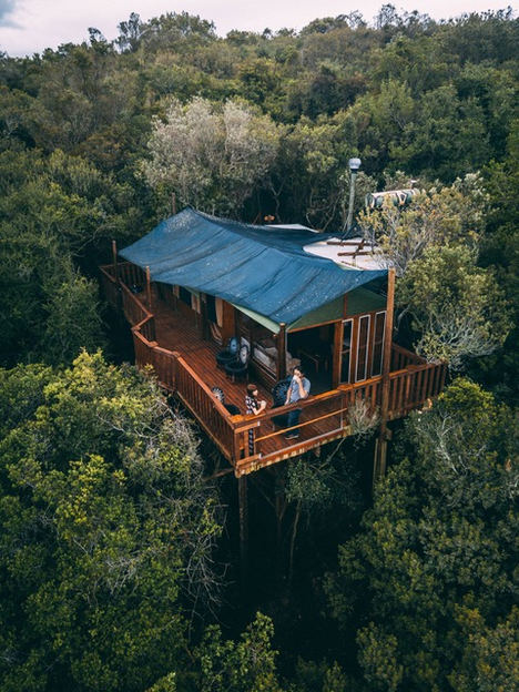 Casas en las alturas: vivir el lujo desde la copa de un árbol