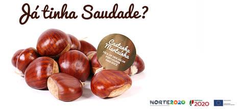 Ha nacido Saudade, la nueva marca de castañas portuguesas