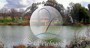 La naturaleza a nuestros pies en el Club Deportivo El Piélago, de Ciudad Real