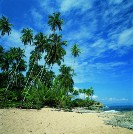Pura Vida de costa a costa