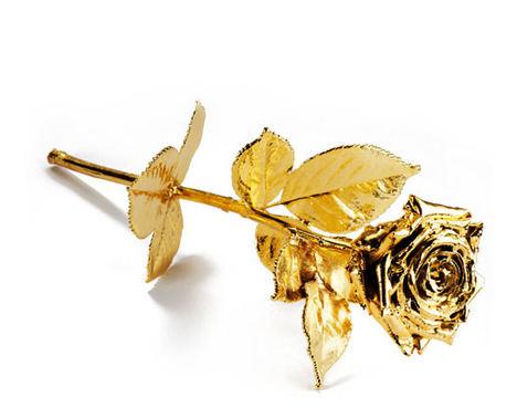 El Club Internacional de Prensa entregará a Ana Rosa Quintana una rosa de oro de Degussa para premiar su trayectoria profesional