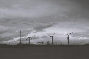Las empresas del siglo XXI deben caminar hacia la sostenibilidad para cumplir con la normativa actual