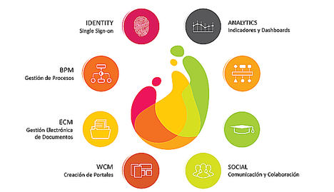 Aggity introduce en Europa una plataforma capaz de transformar digitalmente un negocio en tiempo récord