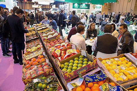 El Comité Organizador de Fruit Attraction prevé un crecimiento del 10% en la próxima edición