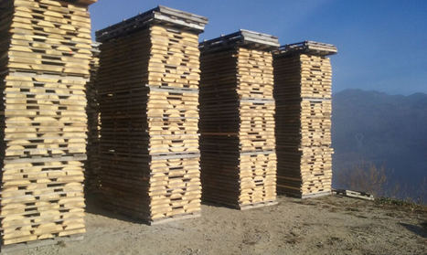 Gabarró da un paso más en la comercialización de maderas certificadas y potencia las especies locales