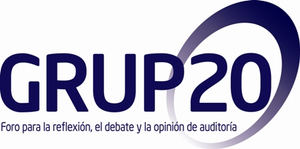 Grupo20 propone la instauración de la auditoría conjunta obligatoria en España para abrir el mercado a una competencia más eficiente