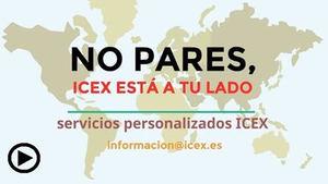 ICEX refuerza los Servicios Personalizados a las empresas