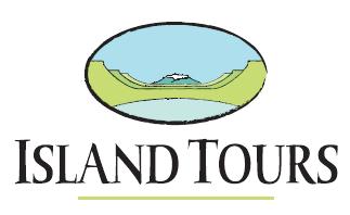 Island Tours aumenta más de un 40% el número de pasajeros con respecto a 2015