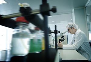 Nanotecnología en alimentación, estado de situación