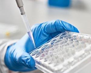 ORYZON presenta nuevos datos positivos de eficacia del ensayo de iadademstat de Fase IIa ALICE en el congreso de la Asociación Europea de Hematología, EHA-2021