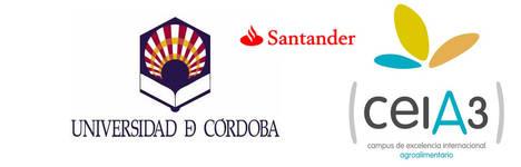 La UCO, ceiA3 y el Santander seguirán colaborando para impulsar el emprendimiento y la innovación