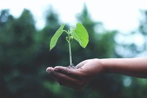 Logitech acelera sus planes de sostenibilidad para lograr un consumo energético 100% renovable en 2030