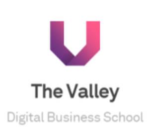 The Valley DBS desgrana las claves para el éxito digital en una colección de 25 libros