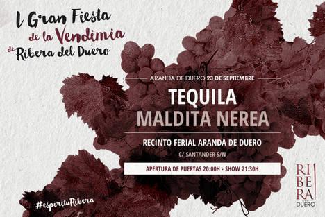 Aranda de Duero se prepara para la 1ª Gran Fiesta de la Vendimia de Ribera del Duero