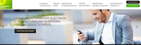 Actores en el sector de la energía eléctrica