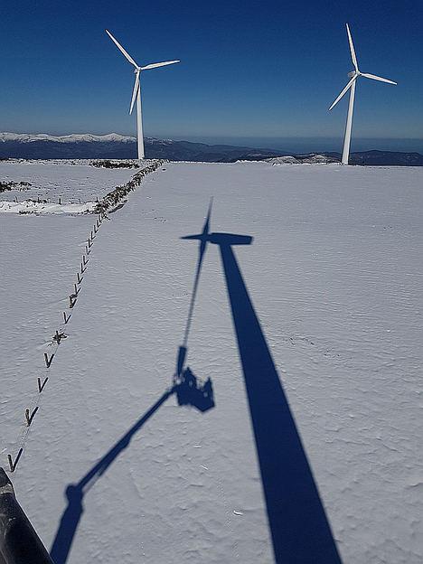Viesgo centra su negocio en la distribución eléctrica, las energías renovables y la generación eficiente